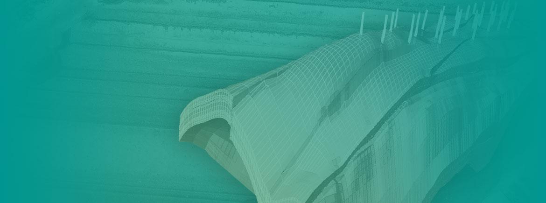 susan-banner.jpg